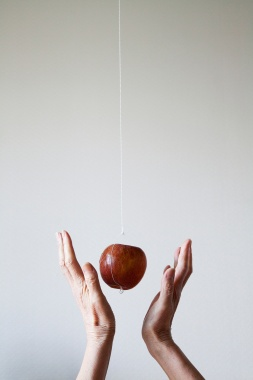 Art and Documentary Photography Blog - Loading Hanging Apple