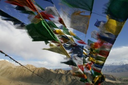 Art and Documentary Photography Blog - Loading The Tibetans of Ladakh